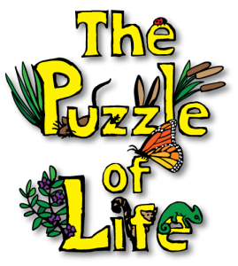 The new Puzzle of Life title design.