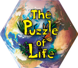 The Puzzle of Life: a serious-type game from Mindful Mammoth. The Puzzle is an ecological sandbox where players can learn about ecological systems and systems thinking through play. Click here to go to the Puzzle of Life Website.